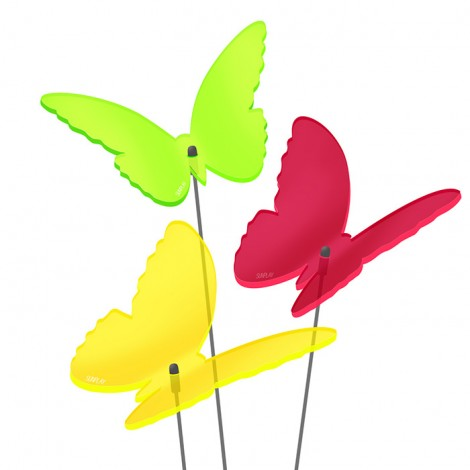 Sonnenfänger Schmetterlinge
