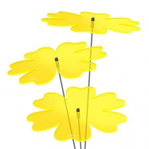 Sonnenfänger Butterblume Blume